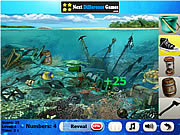 Coral reefs. hidden objects