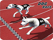 Crazy Dog Racing Fever Game 3D