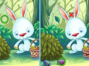 Find Differences Bunny